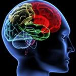 Ictus e malattie neurodegenerative: a Modena ricerca rivoluzionaria